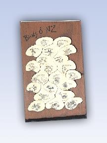 Birds O' NZ
